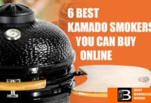 Photo of 6 Best Kamado Smokers You Can Buy Online