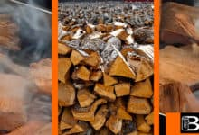Photo of Apple Wood for Smoking Meat