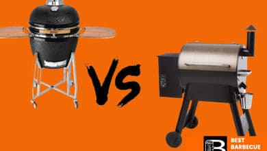 Photo of Kamado Grill VS Smoker